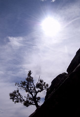 Shape (albinobobman) Tags: sky cloud sun tree lens outdoors colorado rocks glare hiking boulder flare silohuette