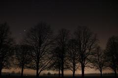 Venus and Jupiter conjunction (x_harrietrose) Tags: trees light england orange black fog stars venus planets nightsky jupiter coventry lightpolution conjunction