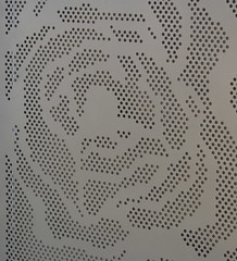Perforated 'Rose' aluminium sheet Precious Pearl  finish - Action Sheetmetal & Roofing (Action Sheetmetal) Tags: aluminium sheetmetal decorativescreen privacyscreen