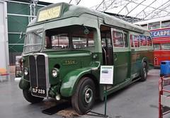 1938 AEC Regal I T504 ELP228 (Richard.Crockett 64) Tags: bus coach surrey greenline regal chiswick brooklands londontransport aec commercialvehicle cobhamhall passengervehicle associatedequipmentcompany t504 elp228 londonbusmuseum