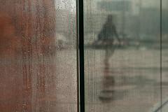 ::::  :&:  (Peter Keyngnaert (pkeyn)) Tags: glass rain silhouette canon person eos mas belgium belgique belgie belgië human figure mens antwerp glas antwerpen regen peterk silhouet 30d figuur persoon museumaandestroom pkeyn peterkeyngnaert keyngnaert