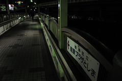 加藤あい 画像11