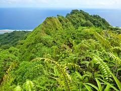 Mt Mutunte, Kosrae, Micronesia (ebuechley) Tags: micronesia kosrae