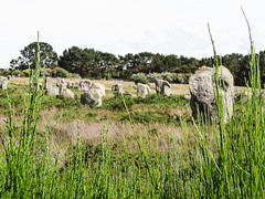 Carnac (m-g-c photographie) Tags: old france green nature rock stone roc brittany europe outdoor ngc bretagne vert breizh mgc rocher herbe roche ancien alignment carnac dehors alignement menhir exterieur alignementdecarnac alignmentofcarnac