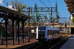 SA136-018 (Krzysztof D.) Tags: station train diesel railway zug railcar gdask kolej pesa pocig railbus schienenbus pomorze pomorska gwny pomorskie stacja szynobus spalinowy sa136