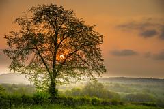 Day's End.... (Eric Goncalves) Tags: light color evening spring warm dusk peaceful gloucestershire fields nikond810 ericgoncalves nikon24120f14vr