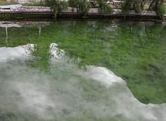 Reflections (raymond_zoller) Tags: reflection green water eau wasser grn spiegelung woda   odraz