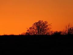 Setting Sun 2 (geoffleppard1) Tags: nature landscape texas country fujifilm roadside westtexas xs1