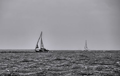 _MG_2701 (Scosanf) Tags: trip travel blackandwhite bw gulfofmexico water monochrome sailboat canon eos coast texas clarity seabrook topaz 6d bweffects tamronsp150600mmf563