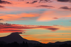 Pastel Sunset (intrepidscotland) Tags: ben lomond sunset silhouettedtrees trossachs national park