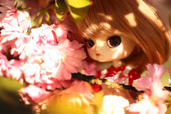Mirabelle (Blublue) Tags: pink red white flower tree fleur rose cherry rouge spring punk doll dal steam planning wig groove pullip ra arbre blanc printemps jun cerisier perruque poupe muw sevastra blublue