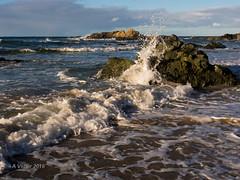 AV2016-1856 (Alanv 1955) Tags: sunset australia places nsw beaches newsouthwales genre portmacquarie