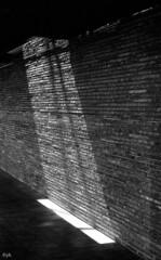 light (Yaman Konuralp) Tags: light nikon nikonf ais architecture interior spaces noir dark nipponkogaku japan agfa apx standdevelopment vintage analog diy r09 rodinal facade building hc110