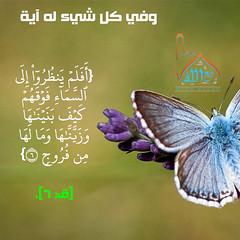 32 (ar.islamkingdom) Tags: الله ، مكان القلب الايمان مكتبة أسماء المؤمنين اسماء بالله، الحسنى، الكتب، اسماءالله