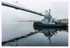 Glenbrook YTB643 (Evan MacPhail Photography) Tags: bridge canada nova fog boat harbour foggy her tugboat tug scotia macdonald dockyard barbor glenbrook halfiax majestys ytb643