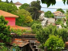 guas Frias (Chaves) - ... pedao da Aldeia ... (Mrio Silva) Tags: primavera portugal casas chaves aldeia trsosmontes 2016 junho madeinportugal ilustrarportugal guasfrias mriosilva lumbudus