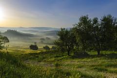 San Quirico, Belvedere (Wolfgang.Grilz) Tags: unesco tuscany belvedere montalcino pienza toscana valdorcia toskana bagnovignoni 2016 sanquirino cretesenese montepulciono
