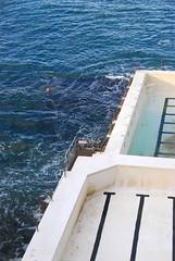 Bondi Icebergs (bobarcpics) Tags: blacklinefever bondi swimmer sea oceanpool bondiicebergs sydney ocean swimmingpool