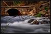 Bridge and Stream (darreng2011) Tags: longexposure bridge water grass canon concrete flow eos rocks cement tasmania gorge flowing launceston cataract cataractgorge wow1 wow2 wow3 600d mygearandme mygearandmepremium dblringexcellence tplringexcellence flickrstruereflection1 flickrstruereflection2 flickrstruereflection3 flickrstruereflection4 flickrstruereflection5 eltringexcellence