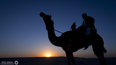 (RASHID ALKUBAISI) Tags: nikon d3 2012 qatar rashid      d3x alkubaisi d3s   ralkubaisi nikond3s mygearandme  wwwrashidalkubaisicom