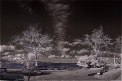 Dardanelles (a.Kry) Tags: winter panorama nature clouds turkey landscape ir scenery day pano canondslr canoneos  falsecolor falsecolour dardanelles       chanakkale fauxcolor hellespont convertedcamera infraredphoto  infraredpanorama 1000d  canoneos1000d  akryphotoart irpano imenlikkalesi