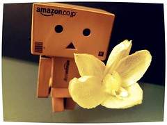 your flower (ghostsecurity28) Tags: toys dolls creative experiment adventures figures danbo danboard