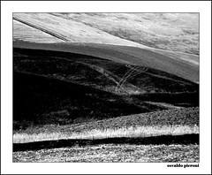 sicily burned fields bw (Osvaldo_Zoom) Tags: rural landscape tracks fields sicily burned