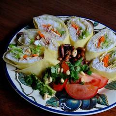 cold doufu rolls (Ian Riley [on the right side of the fence]) Tags: food cold tomato salad rice tofu australia peanuts homemade garlic adelaide rolls sa southaustralia vermicelli avacado doufu