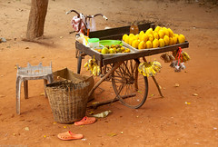A Life On Wheels (manuelm) Tags: fruits bike canon photography cambodia bicicleta canon5d seller negocio changarro canon5dmark2 5dm2