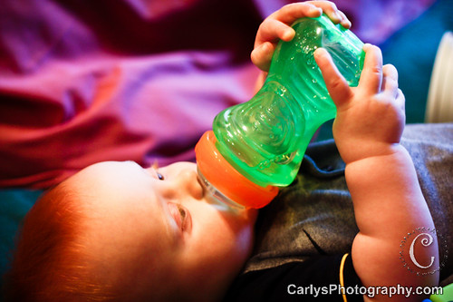 sippy cup-2.jpg