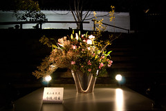 Ikebana exhibited against the Chion-in temple wall (Otomodachi) Tags: flowers festival japan night dark lights march kyoto nacht ikebana matsuri bloemen flowerarrangement 2012 donker lichtjes maart bloemstuk hanatouro higashiyama lightfestival japaneseflowerarrangement lichtfestival