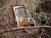 A DUMPED TRUCK CAB IN MARCH 2012 (richie 59) Tags: door trees winter usa abandoned overgrown america truck outside us weeds backyard junk rust automobile unitedstates country rusty faded rusted marlboro trucks newyorkstate oldtruck automobiles obsolete 2012 nystate rustytruck rustydoor hudsonvalley opendoor abandonedproperty 2door rustedout junktruck fadedpaint truckcab oldtrucks cabover ulstercounty rustyoldtruck twodoor truckdoor americantruck abandonedtruck midhudsonvalley rustyoldtrucks rustytrucks ulstercountyny marlborony ustrucks ustruck oldrustytruck americantrucks junktrucks cabovertruck abandonedtrucks longabandoned oldrustytrucks oldtruckcab richie59 march2012 townofmarlboroughny townofmarlborough march172012