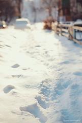 346/365 When in winter
