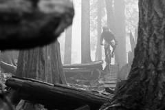 2012_02_Fromme_0675 (Dustan Sept) Tags: bw bicycle fog vancouver forest shore expresso mountainbiking fromme