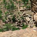 Dogon%2520Country%252C%2520Mali%2520114