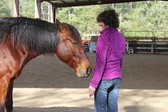 Heather & Jackson (Barbara Alexander) Tags: horses boundaries selfimprovement selfawareness mentorship barbaraalexander equineexperientiallearning eponaridge