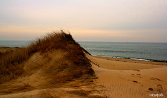 Martha's Vineyard, Massachusetts (Onatah822) Tags: beach capecod dunes marthasvineyard