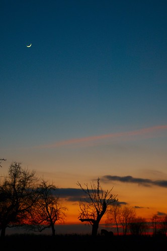 sunset Bietigheim moon