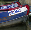 Photo of Airedale Bedale