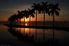 2012-02-18 60D Deering Estate Sunrise 053 DPP1 (James Scott S) Tags: ocean wallpaper usa sun reflection sunrise canon palms scott eos james shoot estate meetup florida miami united royal atlantic fl states usm rise dslr ef deering 2470mm f28l 60d