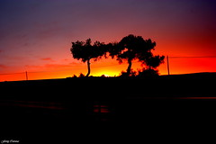 Nants ingonyama bakithi Baba (Ferny Carreras) Tags: road sunset red sky orange tree night arbol atardecer noche rojo carretera cielo naranja nocturne silouete reylen oltusfotos siloeta