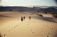 Mesquite Sand Dunes, Death Valley (spieri_sf) Tags: film la lomo lomography sardina dunes toycamera deathvalley sanddunes mesquitedunes lasardina kodakpro100