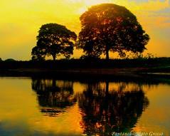 """Anoitecer no  Pantanal (tinica50) Tags: sunset brazil mt pantanal anoitecer panoramafotográfico """"flickraward"""""""