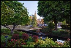 Carnation Plaza Gardens (Silver1SWA (Ryan Pastorino)) Tags: canon disneyland sigma 7d sig waltdisney sigma1020 onemoredisneyday