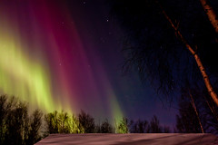 Aurora Borealis (code poet) Tags: pink sky green alaska night stars landscape magenta aurora 1022mm northernlights auroraborealis wasilla 40d