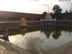 Varadharajar Perumal Temple Tank (Sivakumar Annamalai R) Tags: tank kulam kanchipuram kancheepuram theppam devarajaswamy kovilkulam