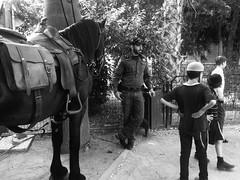 """""""Silence on tourne"""" (shirleyann_rafael) Tags: street blackandwhite bw horse man animal kids blackwhite streetphotography streetphotographe"""