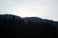 Poland Landscape (BenKrzanowski) Tags: travel blue trees sunset sky sun sunlight nature clouds landscape exposure outdoor