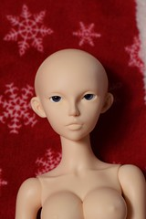 Fairyline 60 Scarlett box opening (Sendell_Caramdir) Tags: scarlett box sd opening fairyland 60 legit feeple fairyline