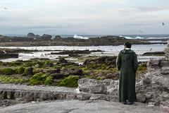 verso l'Atlantico (io.robin) Tags: sky panorama landscape see mare cielo marocco maghreb moroco essaouira gabbiani oceano onde marocchino scoglio oceanoatlantico